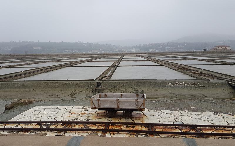 Obalna mesta – z roko v roki z mokrišči