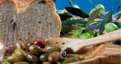 Gastronomska tržnica Feel & Taste in Ledeno kraljestvo