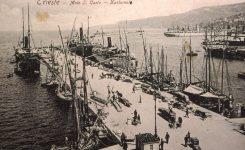 Svobodna plovba po Jadranu