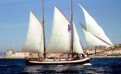 Trabakola Kraljica morja & DLSB Piran