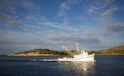 Štorije z Jadrana 1 – Kurz za ribo
