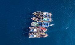 SLEDLJIVOST – TOP tema evropske ribiške politike