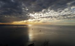 Tri države skupaj za zaščito severnega Jadrana