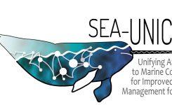 Akcija SEA-UNICORN COST