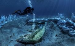 Ob Iloviku našli ostanke rimske ladje iz 2. stol. pr. n. št.