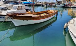 Motorni čoln Michelle